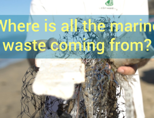 Italy's plastic problem (and solutions)